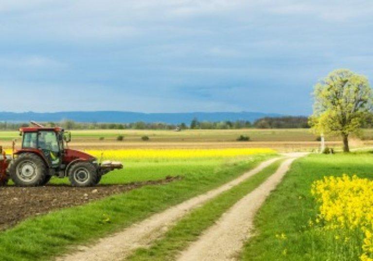 Baux ruraux: l'indice national des fermages encore en baisse