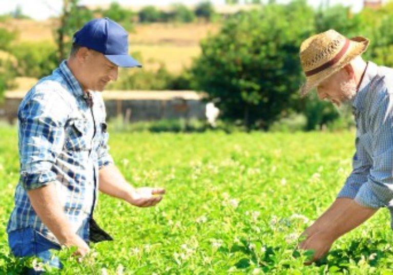 Exonération fiscale des biens ruraux loués à long terme